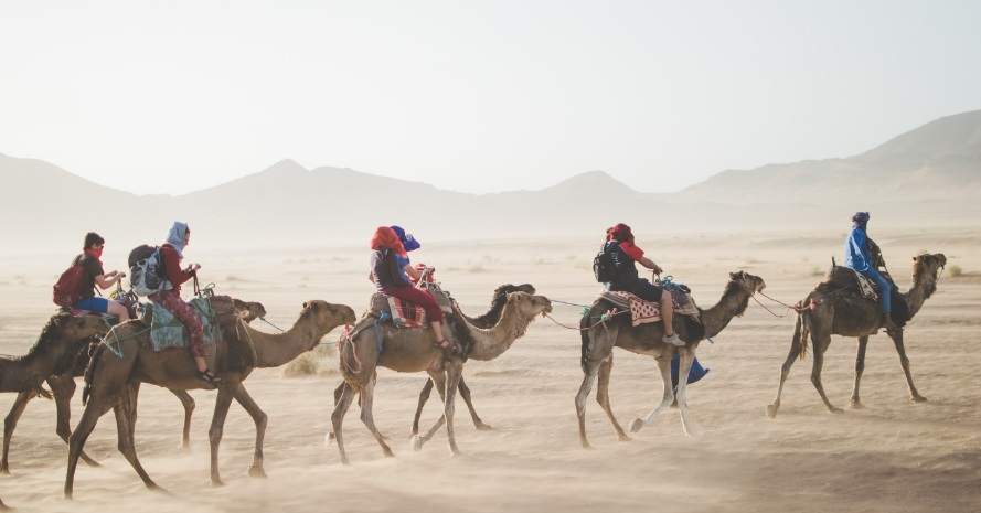 Five tourist Camel Riding on Thar desert in India