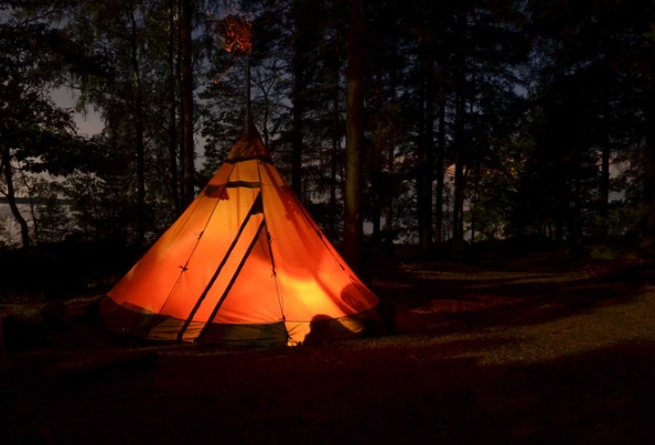 Camping tent in a forest during the night