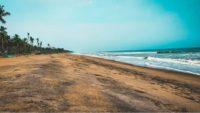 Kerala Beach Picture